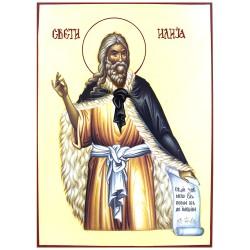 Sveti prorok  Ilija (35x24) cm