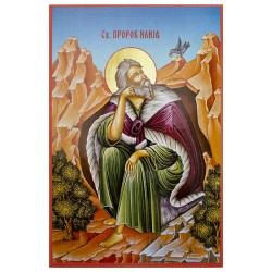 Sveti prorok Ilija  (31,5x22,5) cm