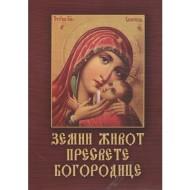 Zemni život Presvete Bogorodice - Sofija Snesoreva